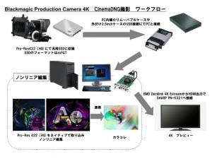 BMD4KCCworkflow
